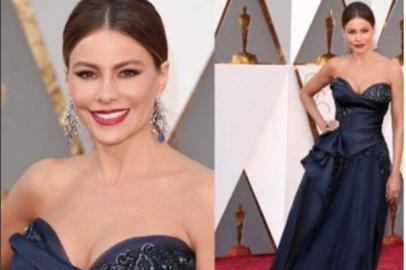 Sofia Vergara graces the red carpet at the Oscars