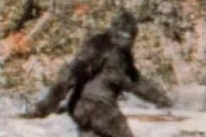 Bigfoot-evidence-sightings-video-pic