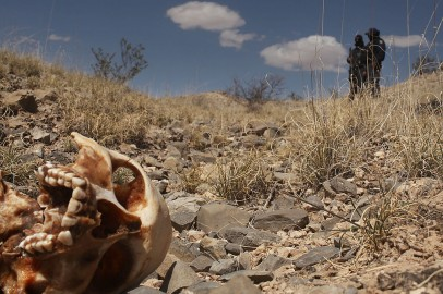 Thousands of Missing Persons in Mexico's Jalisco State Remain Unidentified In Morgues