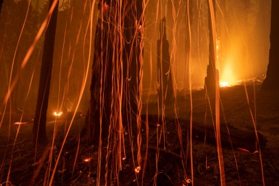 Woman Seen 'Acting Strangely' Arrested for Allegedly Starting Northern California Wildfire