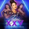 Selena Quintanilla Concert