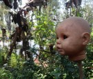 Top 5 Mysterious and Unexplained Places in Latin America