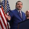 Ted Cruz, Others, Slam Cori Bush: Says Representative's Twitter Post was 'Divisive Lies'