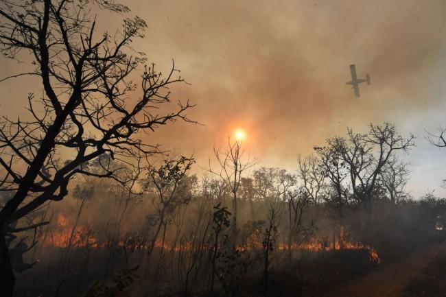 Balloon Starts Large Fire in Brazil Park; Rain of Ash Hits Sao Paulo