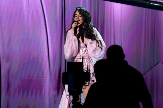 Camila Cabello Reacts to Shawn Mendes Engagement Rumors That Begin From a Tiktok Video