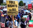 Immigration Activism