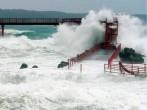 Typhoon Halong ravaged Japan's coast on Saturday evening