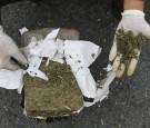 colombia drug cartels marijuana