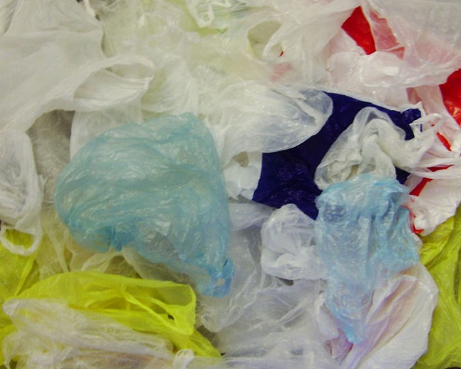 California Lawmakers Pass Statewide Ban on One-Use Plastic Bags