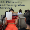 Citizenship and Immigration Services