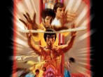 Thanksgiving Kung Fu Marathon -