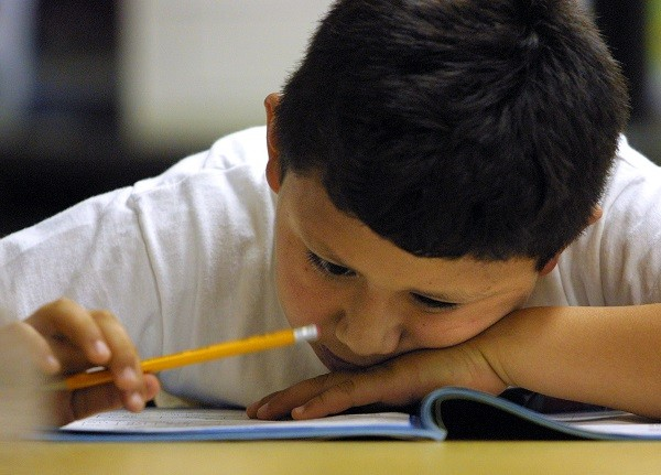 Bilinguals More Efficient at Higher-Level Brain Functions, Study Says