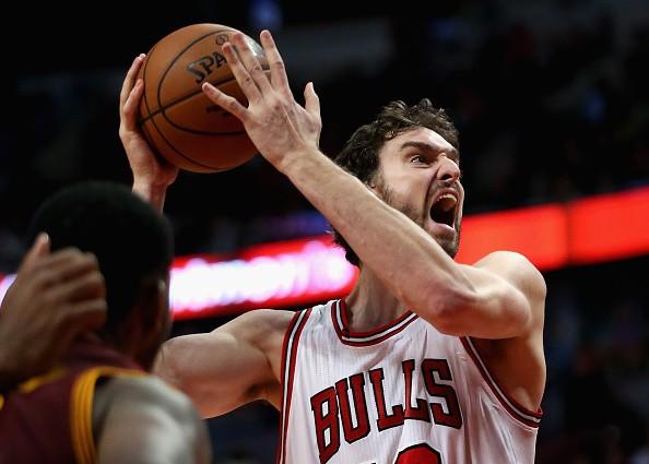 Chicago Bulls Power Forward
