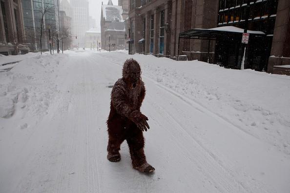 Bigfoot-News