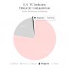 Diversity in Venture Capital, 2015 Report Latino makeup